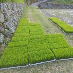 画像 ∵ 松本へ の記事より 6つ目