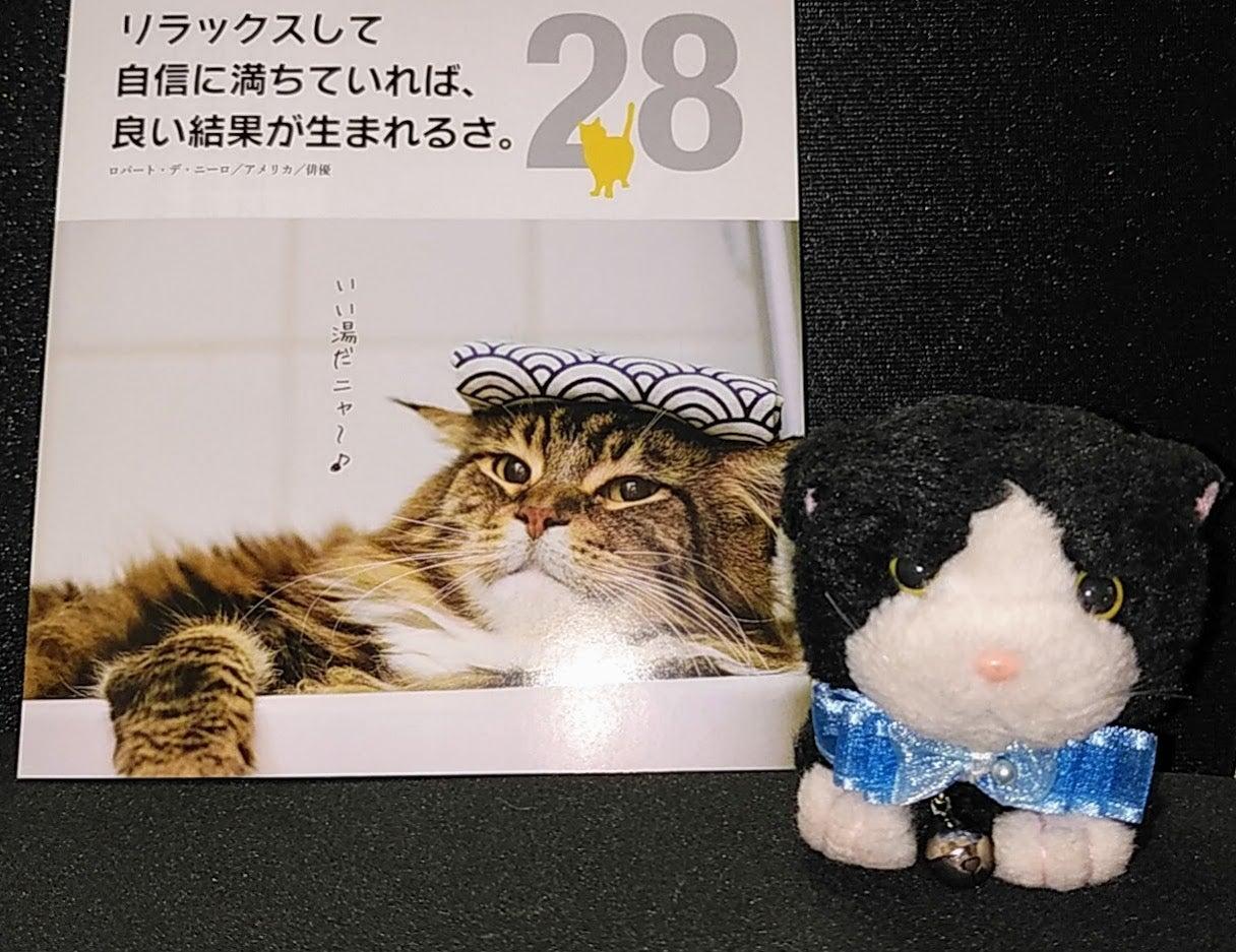 otori♡(オトリ)とニャンズコロニャ・ 緊急事態宣言 解除 首都圏と北海道も いよいよにゃ