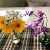 9726KNT-CTホールディングスと登校日とお庭のお花。の画像