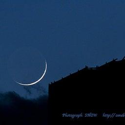 画像 「Fly me to the moon 」 Julie London の記事より 2つ目