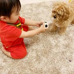 画像 ボール遊び(^^) の記事より 2つ目