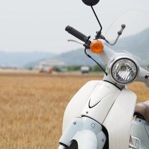 岡山県内満喫ツーリング!麦畑&ホルモンうどん、コロナの影響の画像