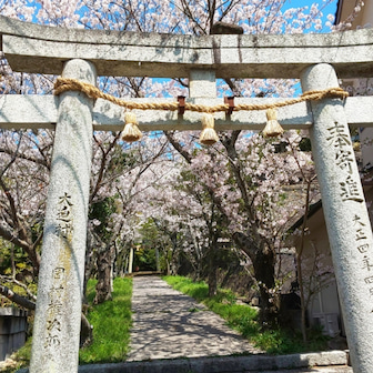 オヤジ達の旅 長門市 八幡人丸神社(狛犬編)