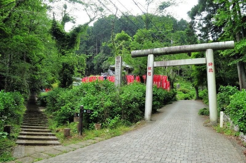 太平山791