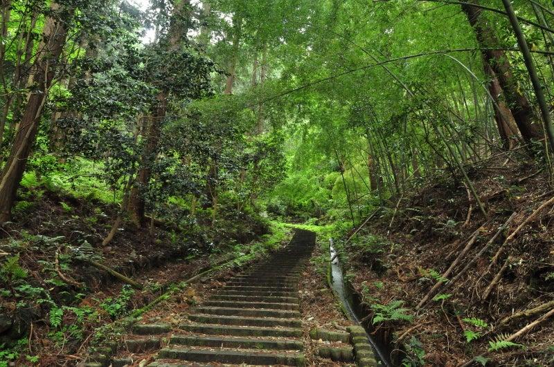 太平山794