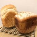 パン大好き!美味しいもの大好き!