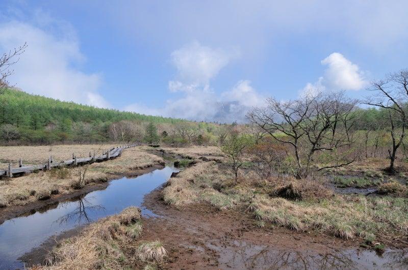 沼ッ原湿原575