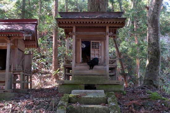 浄法寺館【9】