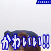 あゆみんのリアクション動画/4年