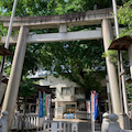 てくてく散歩、台東区は鳥越神社
