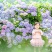 【募集開始】紫陽花撮影会について