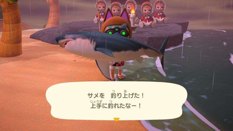 あつ森 サメ 種類 値段