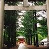 【立川諏訪神社】〜ビジネスマンにお勧めの御神徳の画像