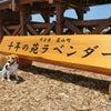 2019/06嵐山ラベンダー畑ヘの画像