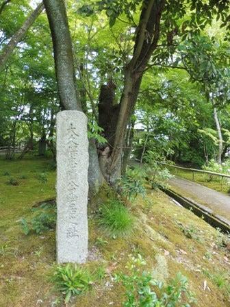 徳川家康(「改易・所領没収」)と大久保忠隣 | 今日の景色