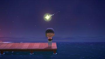 いる に あつ こない フーコ 流れ星 の 森