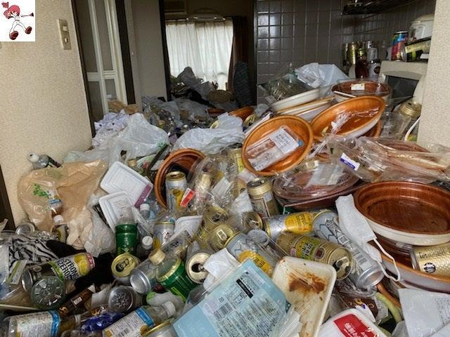 引っ越しを切っ掛けに、ゴミ屋敷からの卒業(ビフォーアフター)名古屋市中心にゴミ屋敷清掃