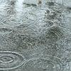 【雨漏り大丈夫ですか??】の画像