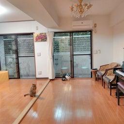 画像 床や壁 家具のキズは「財産」 の記事より 7つ目