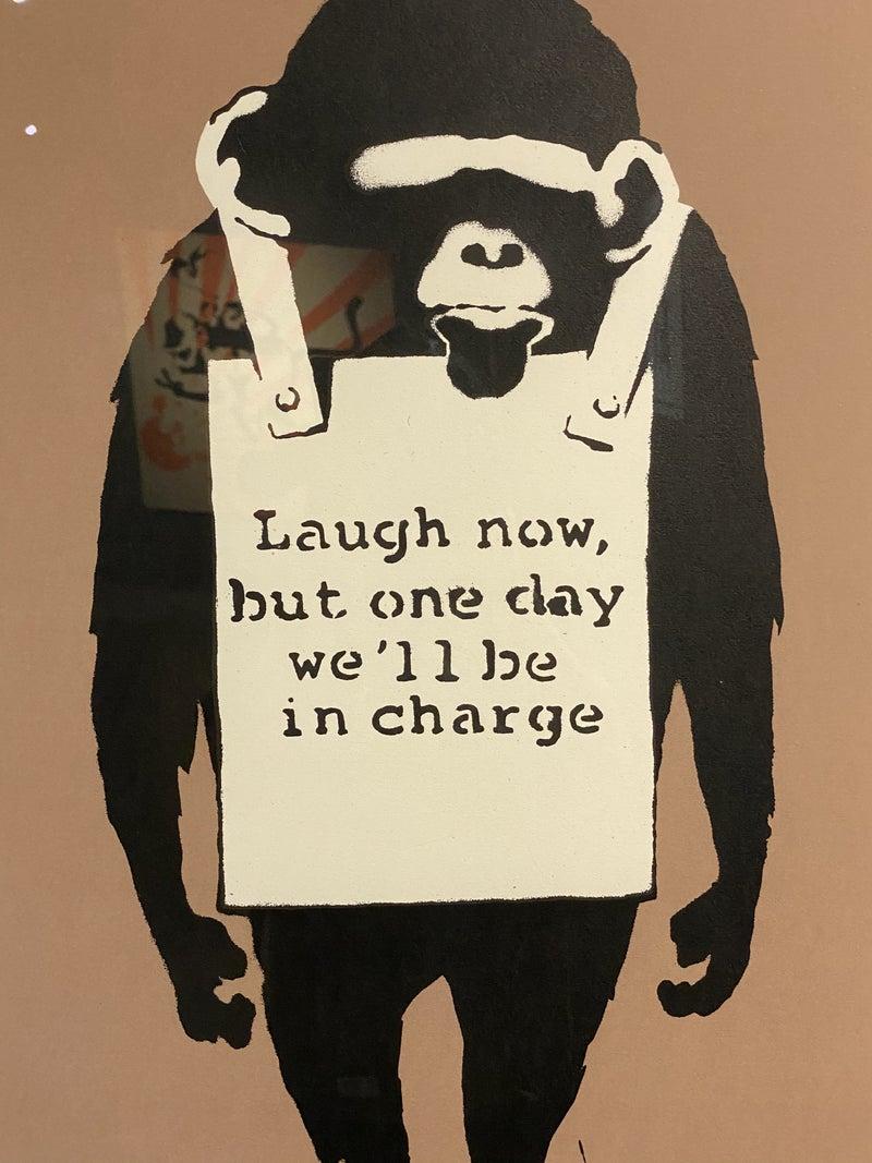 Iq チンパンジー