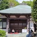 「松光会」肥後細川庭園での茶道会案内ブログ