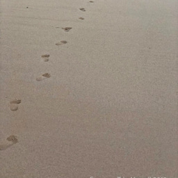 画像 【アウラニ・ディズニー】サンセット後のビーチとプールも素敵でした! の記事より 6つ目