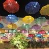 梅雨な季節。の画像