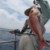 6月17日の釣果の画像