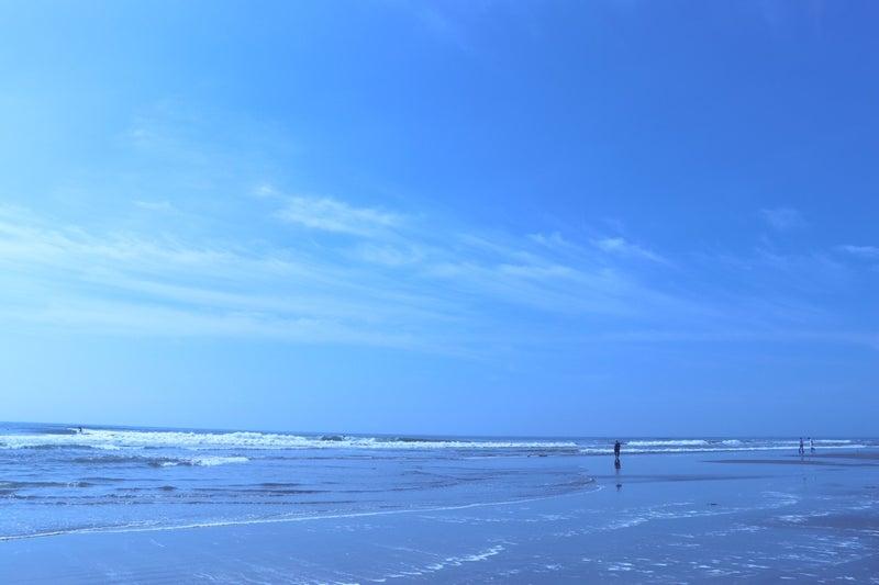 海岸 片貝 シーグラスと貝化石とキュートな陶片!由比ヶ浜でビーチコーミング!