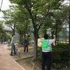 向山公園清掃の画像