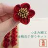 【商品番号:50118】 赤梅花の作り方 ーたわわペップ編ー はじめてさんの つまみ細の画像