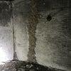 愛知県豊橋市 シロアリ駆除消毒。今年は新型コロナウィルスの影響もあり・・・の画像
