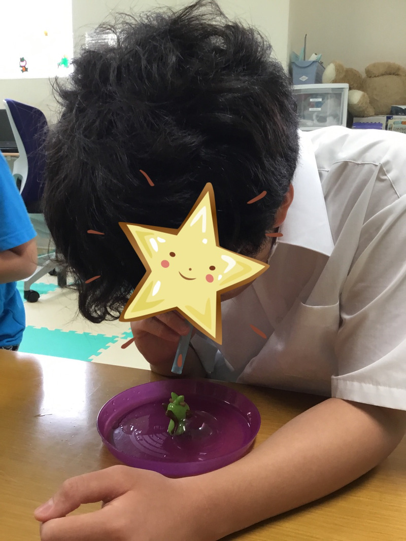 o1080144014778512690 - ♪6月22日(月)♪toiro戸塚