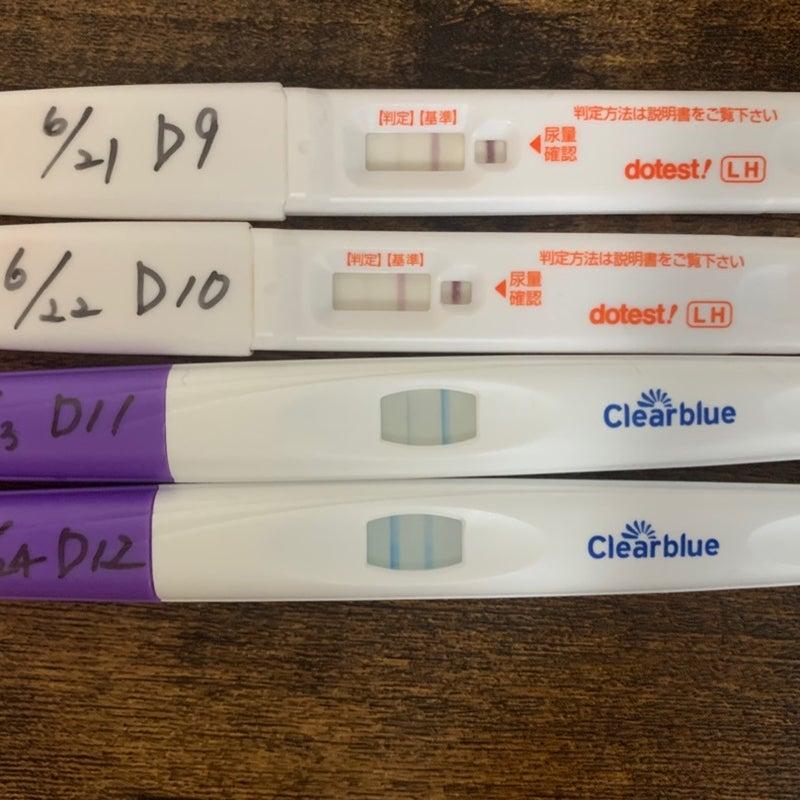 妊娠 薬 で 判定 検査 排卵 排卵検査薬で妊娠判定。生理予定日6月22日〜25日です。23日朝一の尿でドゥーテストで薄…