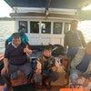 モンゴイカ釣りの画像