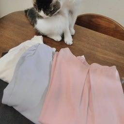 画像 「着まわし」捨てると服が整う の記事より 4つ目