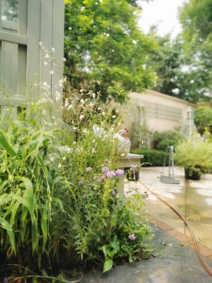 大人気コース『住宅植栽』&『ガーデンデザイン』の授業申込開始!