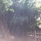レッスンはキラキラの光りの中で♡の記事より