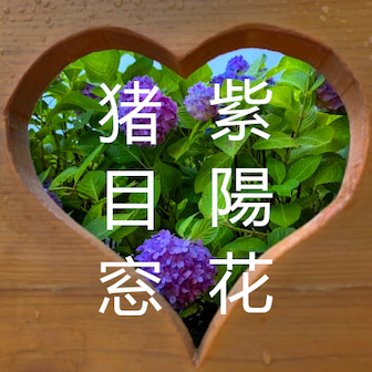 柳谷観音楊谷寺 ハート窓から見る紫陽花