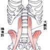 呼吸の深い関わり方を学ぶの画像