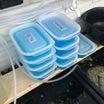 我が家の採卵方法 a.k.a 容器小さすぎ