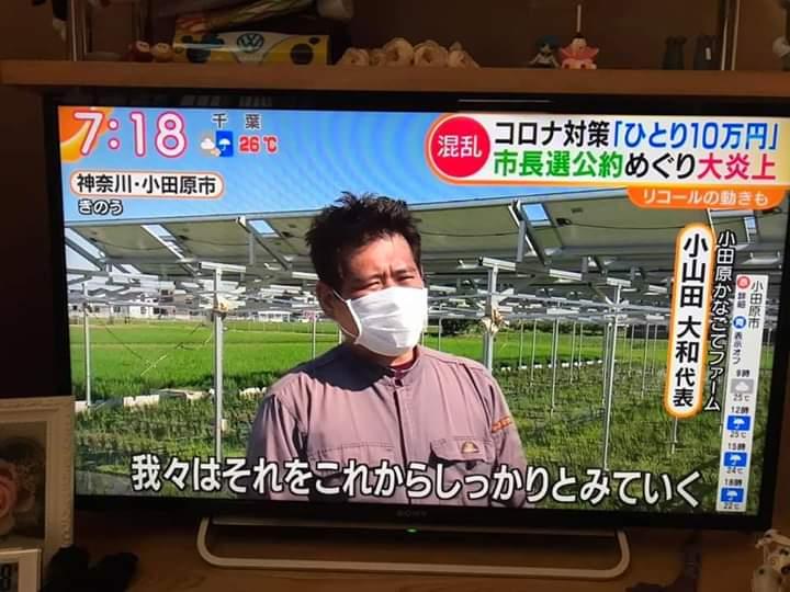 10 万 市長 円 小田原