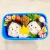 幼稚園のお弁当に込めているもの。の画像