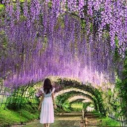画像 【目覚めよ!日本人♪】恋愛エキスパート*恋愛成就・アセンションは私におまかせ♡ の記事より 5つ目