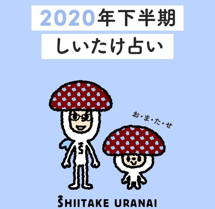 しいたけ 2020 下半期