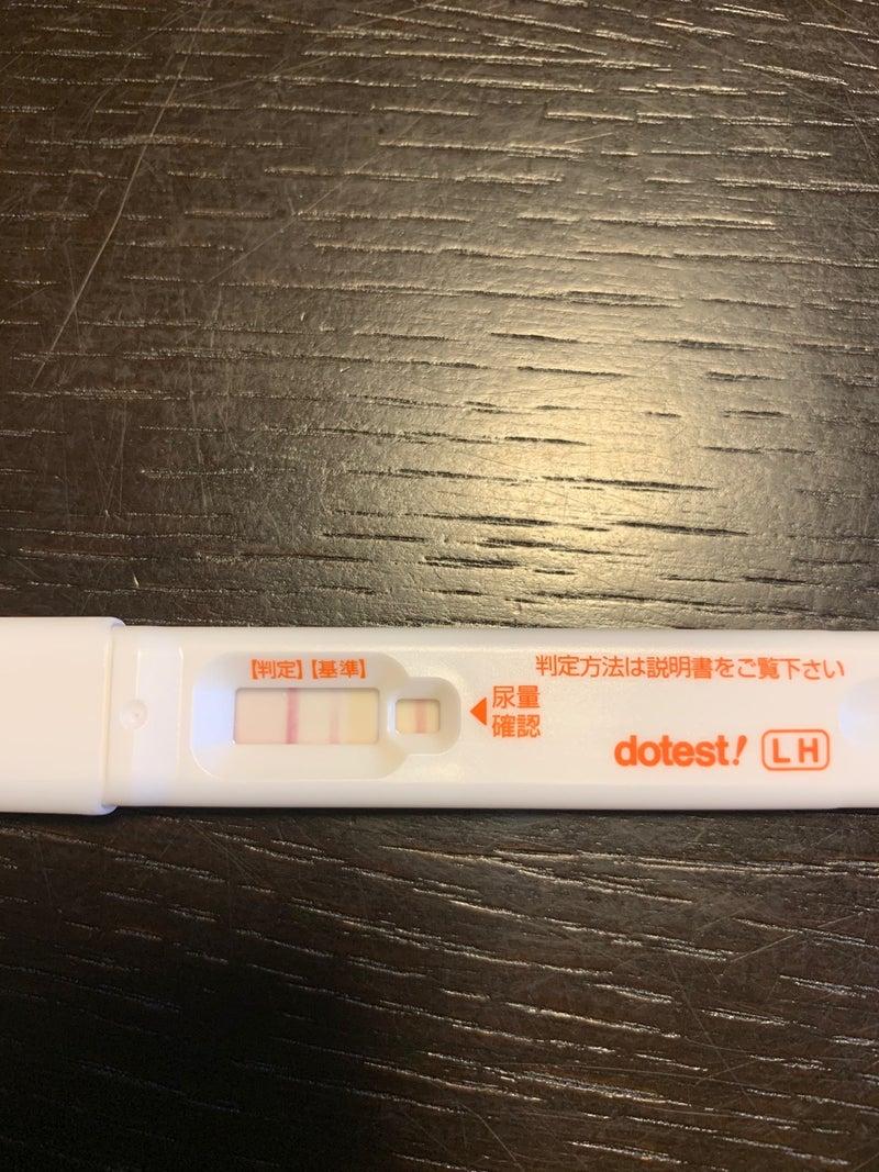 期限切れ 薬 妊娠 検査