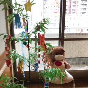 七夕飾りの画像