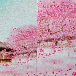 画像 【京都】秀吉が宿所にしていた日蓮宗大本山「妙顕寺」でいただいたステキな【限定御朱印】 の記事より 40つ目