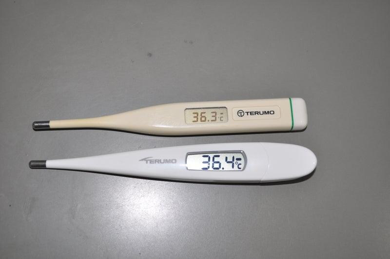 C202 テルモ 体温計