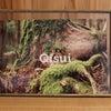 『QISUIの想い』の画像